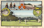 Click here to enlarge image and see more about item p30645: New Brunswick Tourism Advertising Postcard