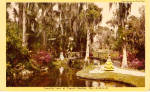 Click here to enlarge image and see more about item p30895: Camellia Lane  Cypress Gardens Florida p30895