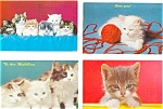 Click here to enlarge image and see more about item p3092: Kittens  Postcard  Lot 5 p3092