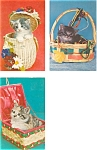 Click here to enlarge image and see more about item p3097: Kittens in Baskets  Postcard  Lot 8 p3097
