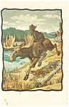 Click here to enlarge image and see more about item p3098: The Moose Escapes Postcard