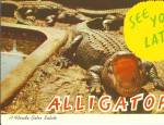 Click here to enlarge image and see more about item p31020: A Florida Gator Salute Postcard p31020