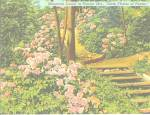 Click here to enlarge image and see more about item p31075: Pennsylvania Stete Flower Mountain Laural