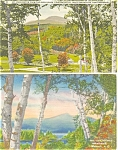 New Hampshire Scenes Postcard  Lot 4