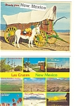 Click here to enlarge image and see more about item p3141: Las Cruces  Postcard  Lot 2