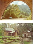 Click here to enlarge image and see more about item p3184: Great Smoky National Park Postcards  Lot 2 p3184