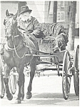 Amish Man Horse and Buggy Postcard