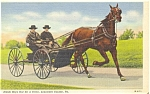 Amish Boys in Horse and Buggy Postcard