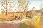 Click here to enlarge image and see more about item p3225: Amish Buggy Country Postcard