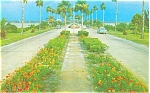 Clearwater  Florida Causeway Postcard p3447