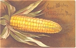 Click here to enlarge image and see more about item p3485: Thanksgiving Ear of Corn Postcard