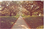 Click here to enlarge image and see more about item p3526: Brookgreen Gardens South Carolina Postcard p3526