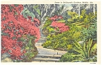 Click here to enlarge image and see more about item p3576: Bellingrath Gardens Mobile AL Postcard