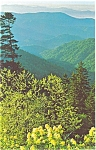 Click here to enlarge image and see more about item p3600: NC View in  Great Smoky National Park Postcard p3600