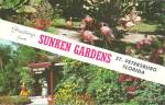 Click to view larger image of St Petersburg FL Sunken Gardens p36139 (Image1)