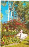 Cypress Gardens FL Beautiful Flowers postcard p36157