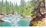 Rivers of the Pacific Northwest  Postcard