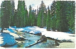 Click here to enlarge image and see more about item p3680: Winter in The Cascades  Postcard