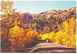 Autumn in White Pass Washington  Postcard