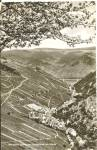 Click here to enlarge image and see more about item p37142: Bacharch Germany  Weindorf Steeg on Rhine River p37142