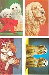 Click here to enlarge image and see more about item p3864: Dogs and Puppies Postcard Lot 4 p3864