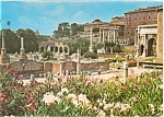 Click here to enlarge image and see more about item p3920: Roman Forum Postcard