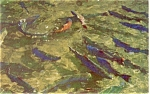 Click here to enlarge image and see more about item p3968: Chinook Salmon Cascade Locks Postcard p3968