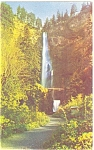 Click here to enlarge image and see more about item p3997: Multnomah Falls Columbia Gorge Postcard