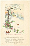 Click here to enlarge image and see more about item p4012: Snow Scene and Birds New Years  Postcard