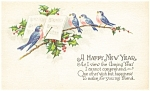 Click here to enlarge image and see more about item p4014: Bird Choir New Years  Postcard