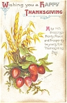 Click here to enlarge image and see more about item p4027: Clapsaddle Thanksgiving Wheat Postcard p4027