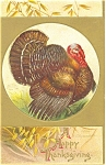Click here to enlarge image and see more about item p4028: Clapsaddle Thanksgiving Turkey Postcard p4028