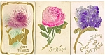 Click here to enlarge image and see more about item p4032: Vintage Best Wishes Flowers Postcard Lot 3 p4032