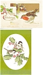 Click here to enlarge image and see more about item p4051: Christmas  Postcard Lot 4 Birds