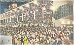 Click here to enlarge image and see more about item p4199: Dog Racing Miami FL Postcard  Linen