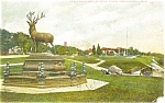 Click here to enlarge image and see more about item p4313: Milwaukee Elk Fountain Postcard p4313