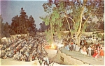 Click here to enlarge image and see more about item p4345: Square Dance Knott's Berry Farm Postcard