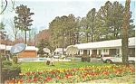 Carolynn Court Motel Williamsburg VA Postcard p4487