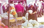 Click here to enlarge image and see more about item p4503: Old City Market Jerusalem Postcard