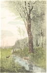 Click here to enlarge image and see more about item p4581: Scenic Deer at a Stream  Postcard p4581