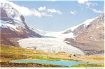 Click here to enlarge image and see more about item p4596: The Columbia Icefields, Canada Postcard