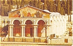 Click here to enlarge image and see more about item p4661: Jerusalem Israel Church of Gethsemane Postcard p4661