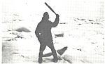 Click here to enlarge image and see more about item p4773: Canadian Seal Protest Postcard