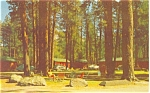 Click here to enlarge image and see more about item p4785: Lassen National Park CA Postcard p4785