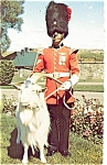 Click here to enlarge image and see more about item p4788: Corporal and Baptiste The Mascot Postcard