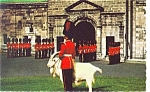 Click here to enlarge image and see more about item p4789: Changing Of The Guard Canada Postcard p4789