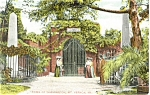 Mt Vernon VA Washington s Tomb Postcard p4941