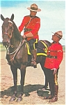 Click here to enlarge image and see more about item p5133: RCMP Mounted Poilce Canada Postcard p5133