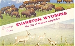Click here to enlarge image and see more about item p5137: Evanston WY Postcard  Buffalo
