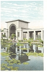 Click here to enlarge image and see more about item p5388: Chicago IL Lily Pond Douglas Park Postcard